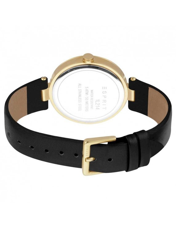 Leather Black Dial Stone Analog Watch